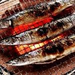 サンマなどの青魚の健康効果とは!?マグロ・サバなど種類別に紹介。