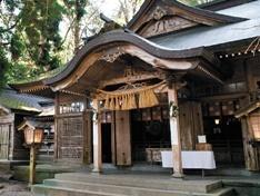 高千穂神社の夫婦杉で「縁結び」の御利益を
